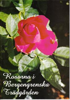 Rosorna i Bergengrenska_small