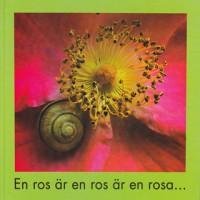 En ros är en ros_small